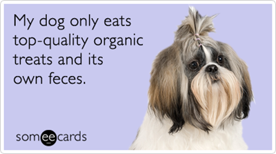 organic-treats-dog-pet-dogs-pets-ecards-someecards