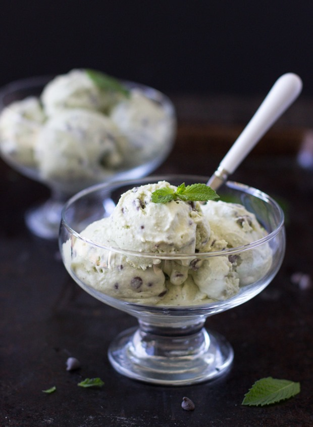 Vegan mint chocolate chip ice cream making thyme for health ccuart Gallery