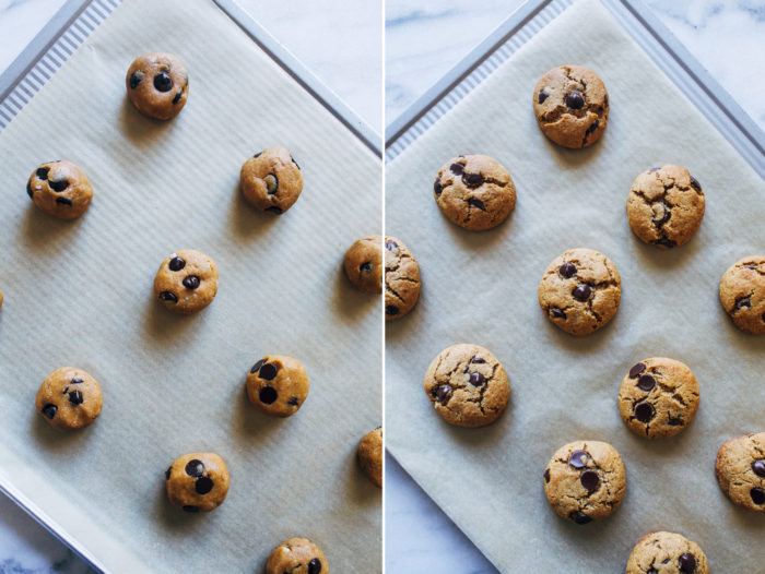 Grain-free Chocolate Chip Cookies- all you need is one bowl and 8 simple ingredients to make these delicious paleo-friendly cookies!